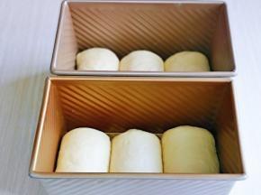 依次做好的卷,放入吐司模具中,放入烤箱进行发酵,可以放入一杯开水,保持面包胚的湿度。