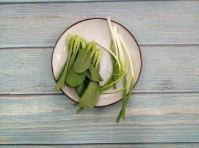 把小葱和小油菜洗干净
